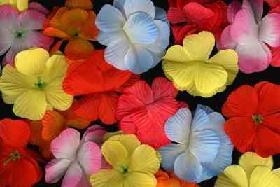 Gewusst wie: Blütenblatt Porzellan verwenden