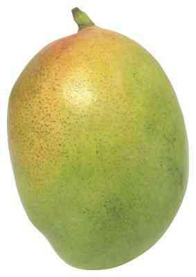 Mango Handwerk