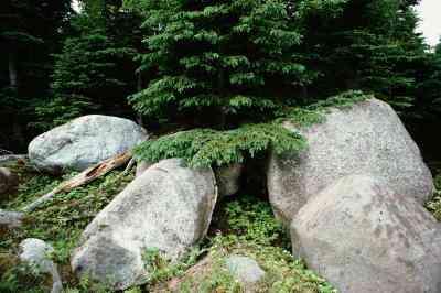 - Materialien Verwendet, um Groß-Künstliche Felsbrocken