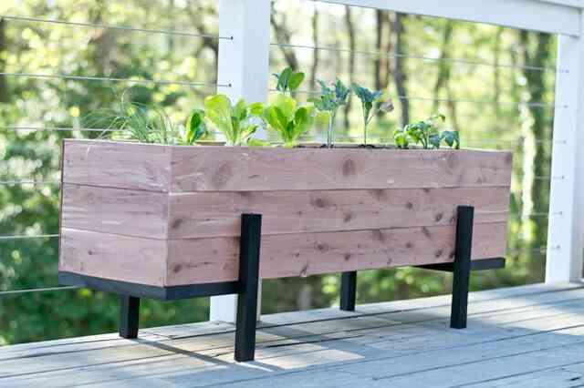 Gewusst wie erstellen und einen salat garten auf dem balkon wachsen - Garten skizze erstellen ...