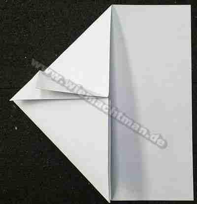 Papierschwalbe