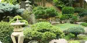 Einen Garten Moos wachsen: Landschaftsbau Ideen